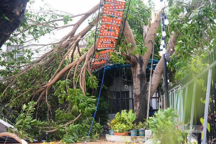 Sau bão số 9, đường phố Đà Nẵng, Quang Nam tan hoang không ngờ-6