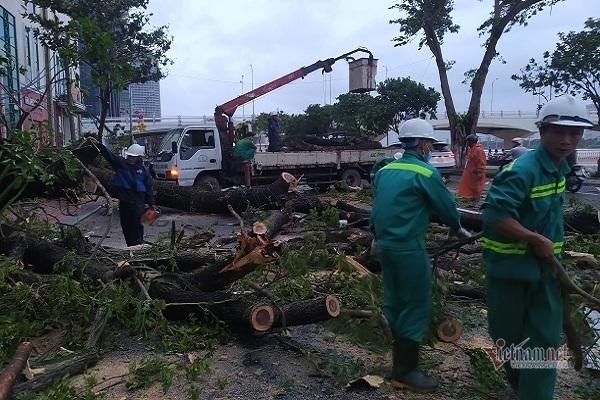 Sau bão số 9, đường phố Đà Nẵng, Quang Nam tan hoang không ngờ-19