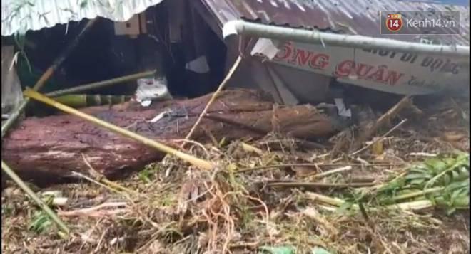Clip: Những hình ảnh đầu tiên về hiện trường vụ sạt lở khiến 8 người chết ở xã Trà Vân, Nam Trà My-4