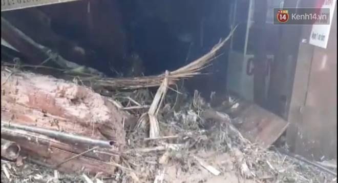 Clip: Những hình ảnh đầu tiên về hiện trường vụ sạt lở khiến 8 người chết ở xã Trà Vân, Nam Trà My-3