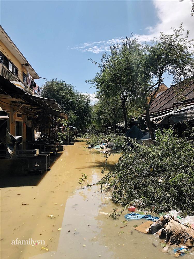 Hội An tan hoang sau bão số 9, những rặng hoa giấy rực rỡ ngày thường nay bỗng hóa xác xơ, nước sông Hoài dâng lên ngập cả nhiều tuyến đường trung tâm phố cổ-9