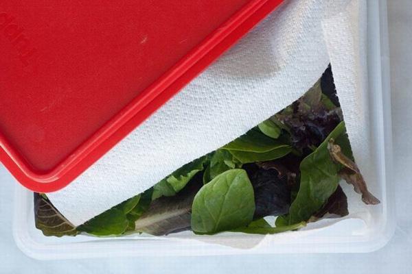 Chỉ với vật dụng quen thuộc này, chị em có thể bảo quản rau củ trong tủ lạnh cả 1 tuần, đảm bảo rau vẫn tươi xanh như vừa mới mua!-4