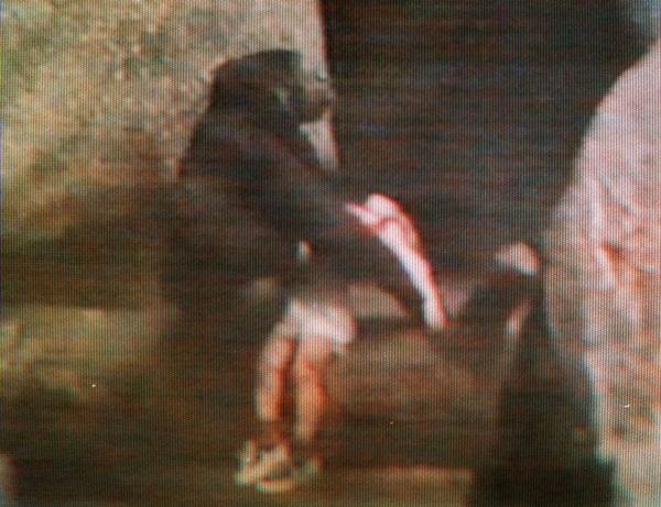 Thấy bé trai rơi vào chuồng, khỉ đột hành động khiến thế giới ngỡ ngàng, 20 năm sau chuyện tương tự xảy ra song con vật nhận kết cục trái ngược hoàn toàn-1