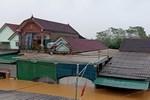 Nước lũ chạm mái nhà ở Nghệ An