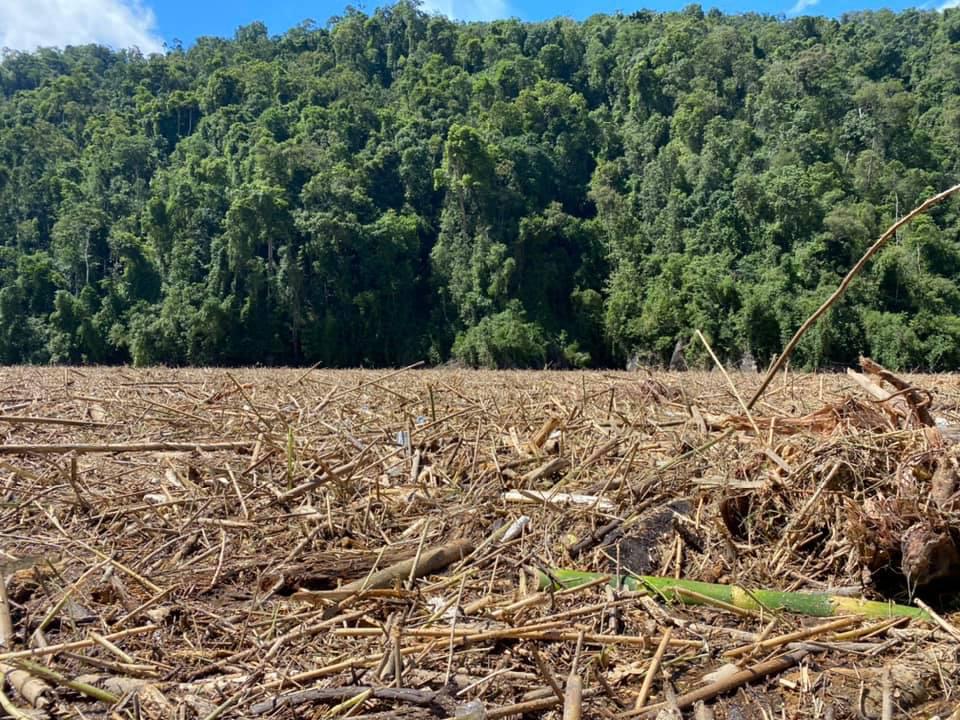 14 người mất tích ở Trà Leng: Đào xới hết khu sạt lở nhưng không tìm thấy ai-4