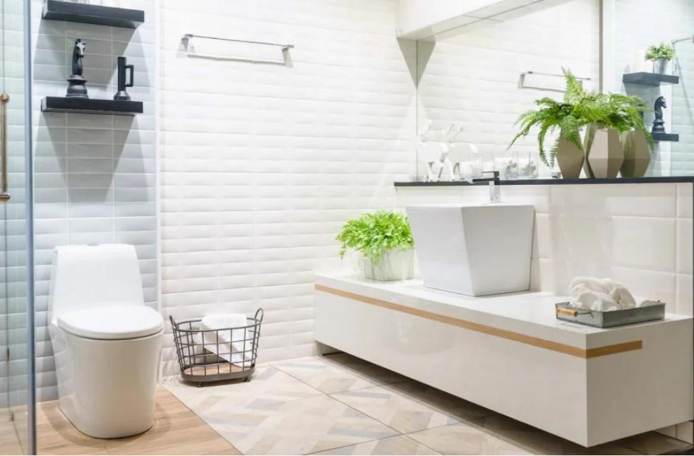 Đặt nhà vệ sinh theo nguyên tắc vàng, gia chủ làm gì cũng thuận lợi dễ dàng thăng tiến-2