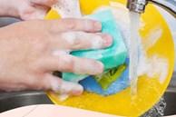 Đây là vật dụng được chứng minh bẩn hơn cả bồn cầu, các bà nội trợ cần vệ sinh đúng cách kẻo 'rước bệnh' cho gia đình lúc nào không hay