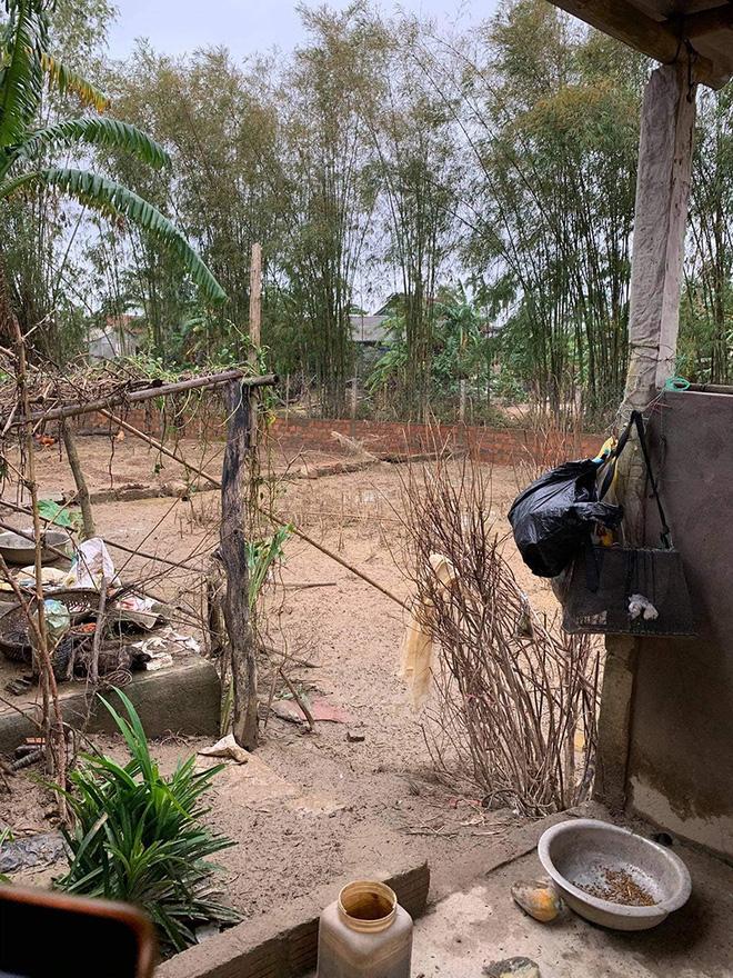Thủy Tiên đăng ảnh nhà bác trưởng xóm ngoài đời thật tại Hải Lăng khiến dân mạng phản ứng, nhiều người liên tục cập nhật hình ảnh và clip toàn cảnh về gia cảnh của bác-1