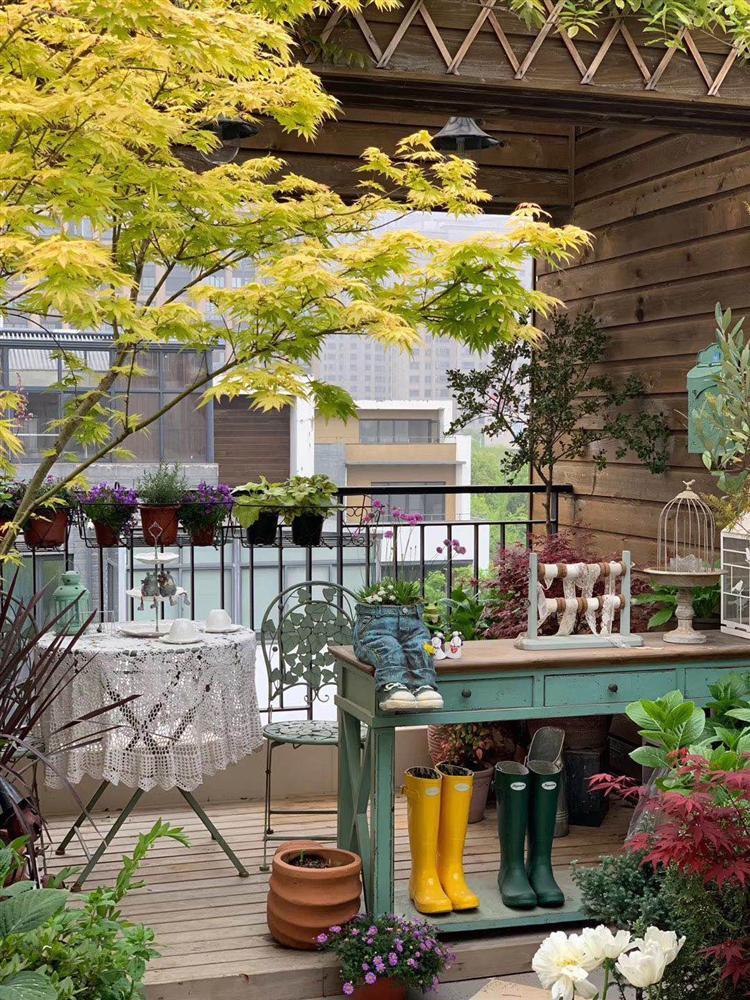 Người đàn ông sở hữu vườn hoa trên sân thượng đẹp như thiên đường ai ngắm cũng mê-11