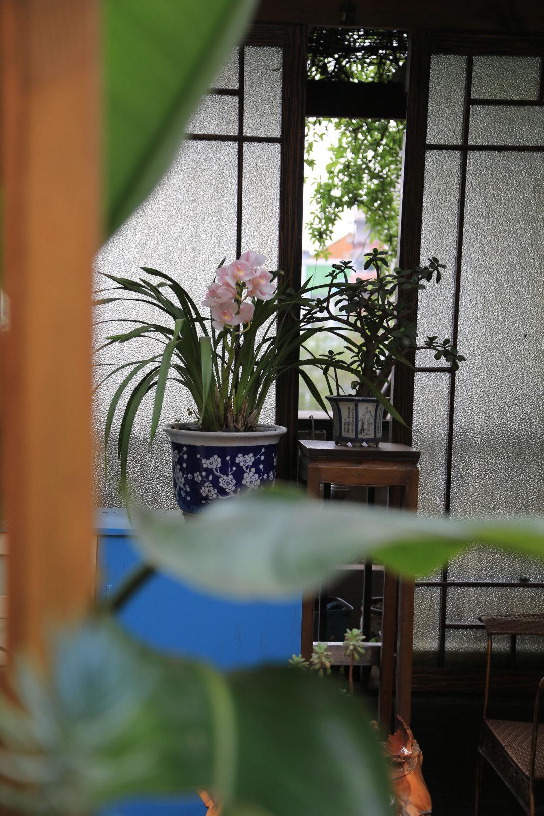 Khu vườn quanh năm chỉ có mùa xuân với hoa nở tưng bừng của cô giáo dạy Toán-12