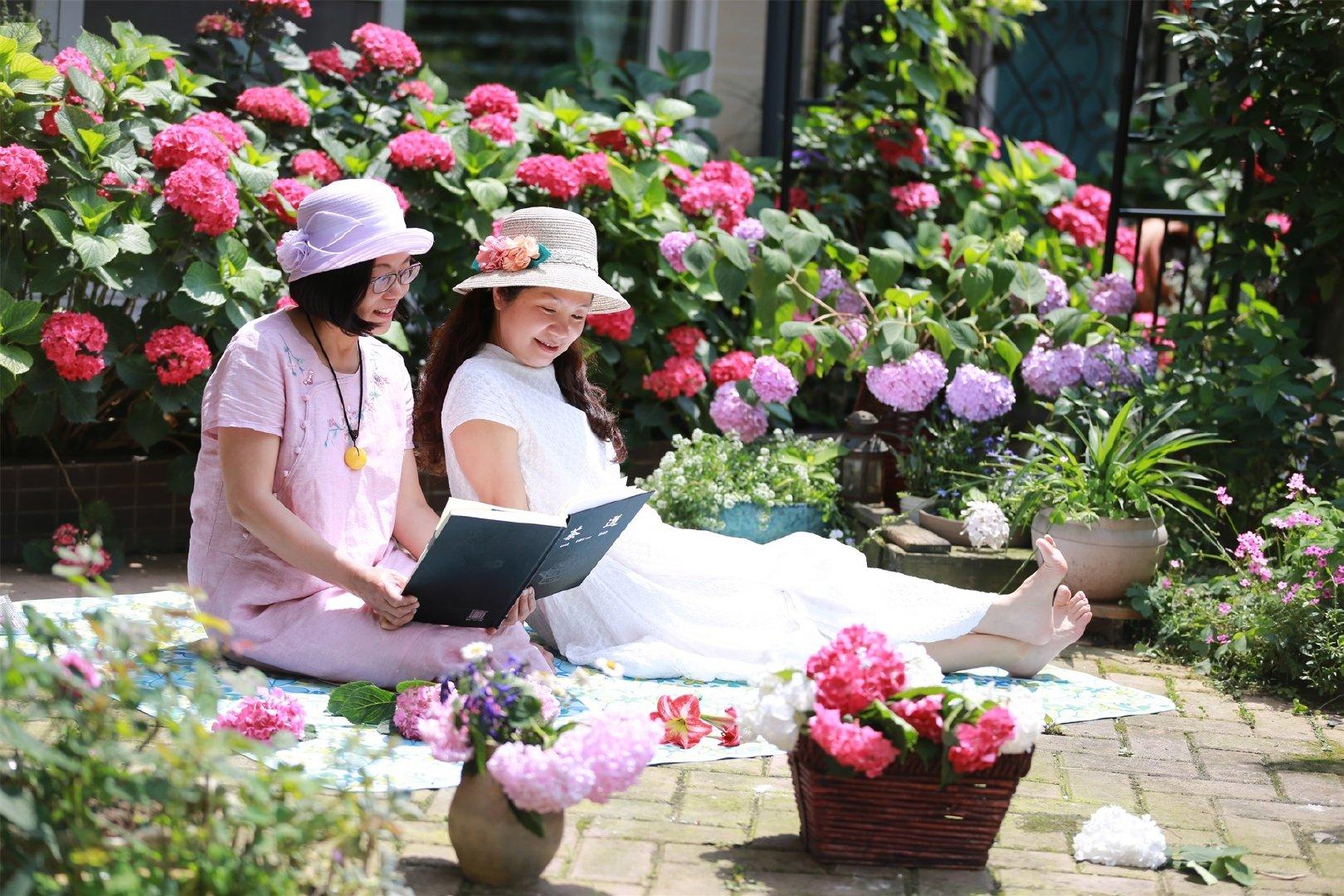 Khu vườn quanh năm chỉ có mùa xuân với hoa nở tưng bừng của cô giáo dạy Toán-2