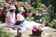 Khu vườn quanh năm chỉ có mùa xuân với hoa nở tưng bừng của cô giáo dạy Toán