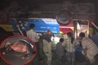 Xe buýt tông trúng trâu đang đi bộ qua đường rồi lật nhào xuống ruộng, gần chục hành khách hoảng loạn