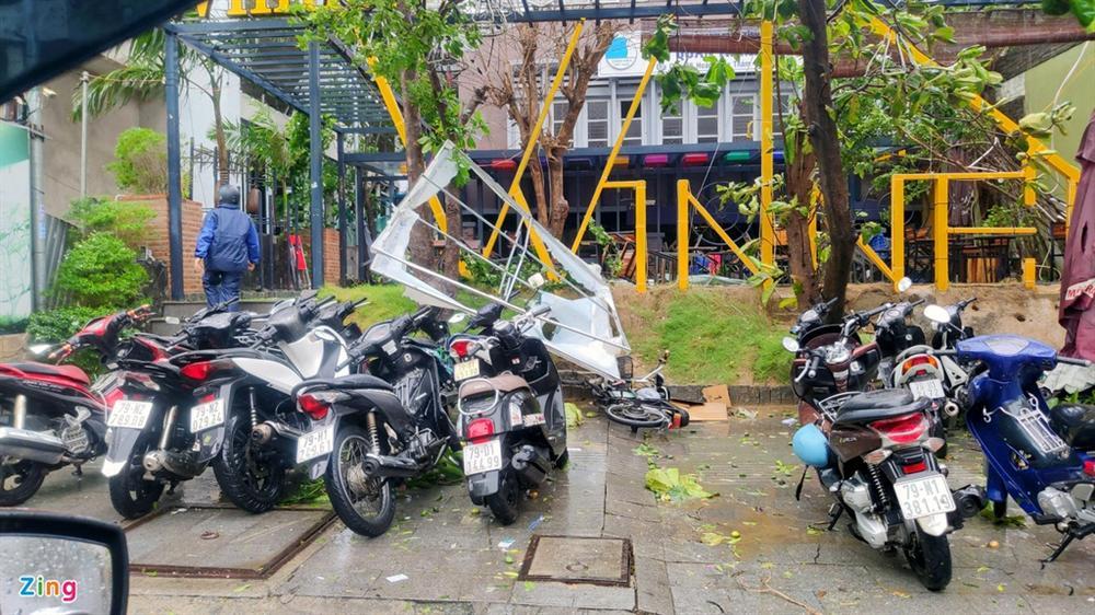 Cây gãy đổ la liệt khi bão số 12 quét qua Nha Trang-4