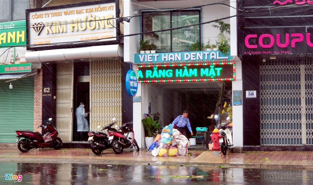 Cây gãy đổ la liệt khi bão số 12 quét qua Nha Trang-5
