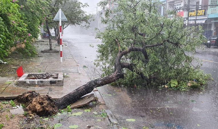 Dự báo thời tiết 11/11: Miền Trung quay quắt với mưa giông, gió giật-1