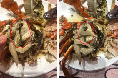 Bỏ hơn 1 triệu ăn buffet hải sản ở nhà hàng nổi tiếng Hà Nội, thực khách bất ngờ phát hiện cua có giun nhưng câu trả lời từ nhà hàng lại là thứ kỳ lạ khác?!?-3