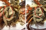 Bỏ hơn 1 triệu ăn buffet hải sản ở nhà hàng nổi tiếng Hà Nội, thực khách bất ngờ phát hiện 'cua có giun' nhưng câu trả lời từ nhà hàng lại là thứ kỳ lạ khác?!?
