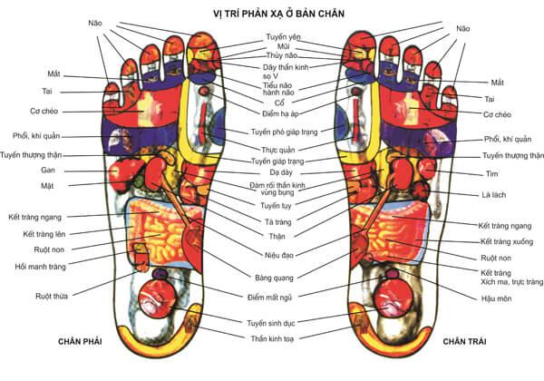 Muốn biết nội tạng có nhiễm bệnh không chỉ cần nhìn xuống bàn chân, có 3 tín hiệu thì cần phải đi khám khẩn cấp-1