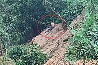 CLIP: Thời khắc cứu sống người bị chôn vùi do sạt lở núi ở Quảng Nam