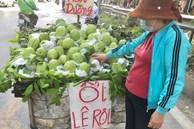 Lạ lùng ổi khổng lồ nặng 1,5kg gắn mác 'Lệ Rơi' hút khách Hà Nội