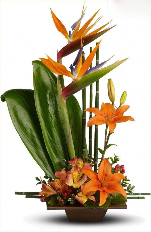 Mách bạn cách chọn và cắm hoa chào mừng ngày Nhà giáo Việt Nam 20/11 thật trang trọng, ý nghĩa-13