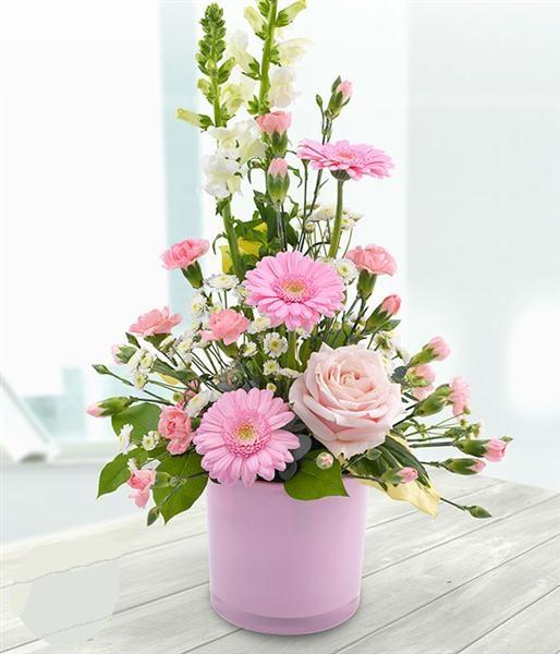 Mách bạn cách chọn và cắm hoa chào mừng ngày Nhà giáo Việt Nam 20/11 thật trang trọng, ý nghĩa-25