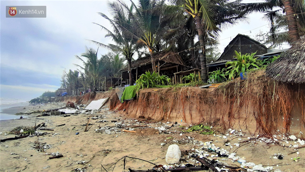 Người dân Hội An thẫn thờ nhìn bờ biển Cửa Đại, An Bàng tan hoang, hàng loạt căn nhà bị sóng biển nuốt chửng-13