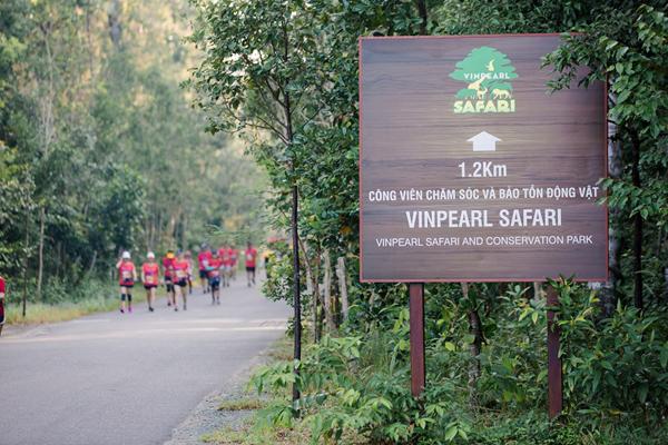 Cung đường marathon 'cực phẩm' và kỳ nghỉ trong mơ ở Vinpearl Phú Quốc-3