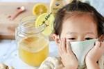 Đánh bay cơn ho cho trẻ không cần dùng kháng sinh: Dắt túi ngay những loại nước là thuốc chữa bệnh có sẵn trong nhà bạn!-4