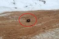 Kinh hoàng hộp sọ và xương người được tìm thấy rải rác trên con đường ở Nga, dân địa phương đồn đoán nguyên do bất ngờ