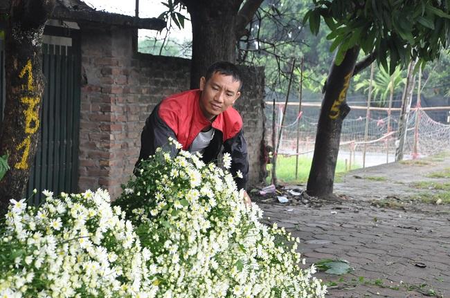 Loài từng là hoa dại ven đường thành đặc sản Hà Nội, nông dân cắt không kịp bán-8
