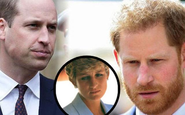 Trong khi anh trai William cố hết sức bảo vệ công lý cho người mẹ quá cố, động thái của Harry gây xôn xao dư luận-1