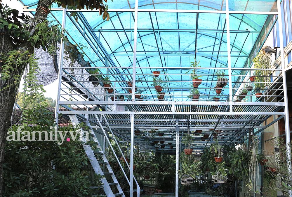 Ngắm vườn tược siêu rộng nhà tân Hoa hậu Việt Nam 2020: Dân sành chỉ chăm soi giàn lan giá trị có thể đến tiền tỷ-3