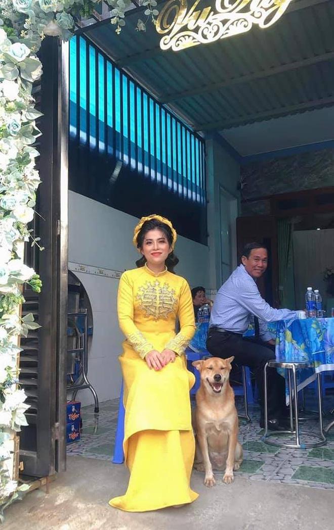 Đám cưới rộn ràng khắp MXH nhờ sự xuất hiện của... một chú chó, biểu cảm vui như Tết khiến ai cũng phải bật cười-1