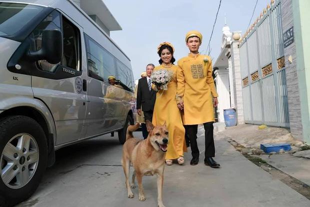Đám cưới rộn ràng khắp MXH nhờ sự xuất hiện của... một chú chó, biểu cảm vui như Tết khiến ai cũng phải bật cười-3
