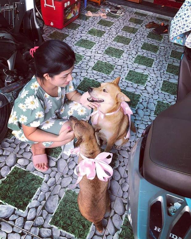 Đám cưới rộn ràng khắp MXH nhờ sự xuất hiện của... một chú chó, biểu cảm vui như Tết khiến ai cũng phải bật cười-4