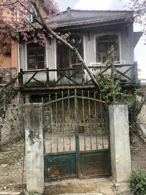 Chỉ vì thích 1 cây anh đào trước cổng ở Đà Lạt, chàng trai mua luôn cả căn nhà cũ và cải tạo thành nơi cực đáng sống-2