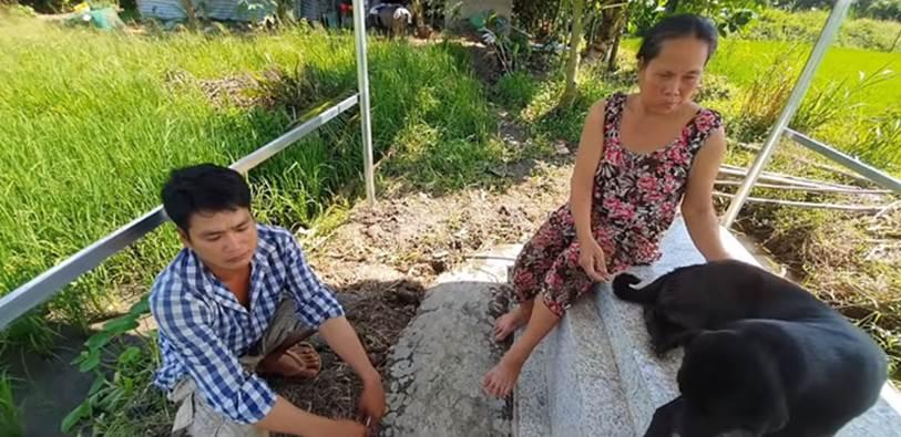 Cảm thương chú chó trung thành nằm canh mộ chủ suốt 3 năm ở Long An, mạnh thường quân góp tiền xây mái che cho mộ để chú chó có chỗ trú nắng, trú mưa-3