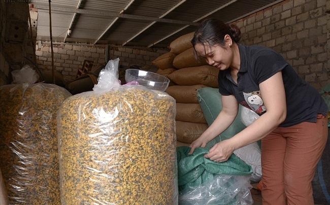 Bông hoa bé bằng cúc áo dùng làm thuốc, pha trà có giá bán tới 800.000 đồng/kg-7