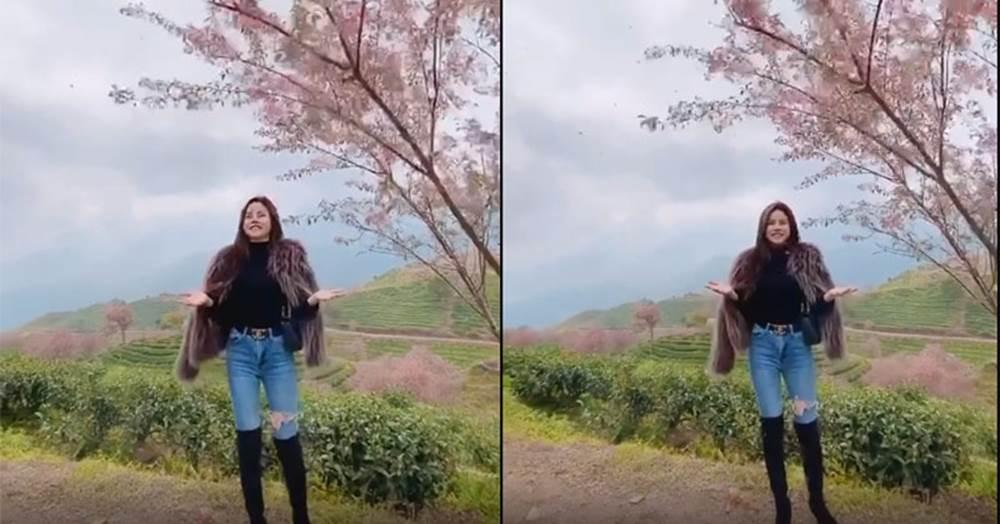 Bức xúc gái xinh rung cây để bạn tạo dáng hoa anh đào đang rơi, còn đăng clip lên mạng cười toe toét-2