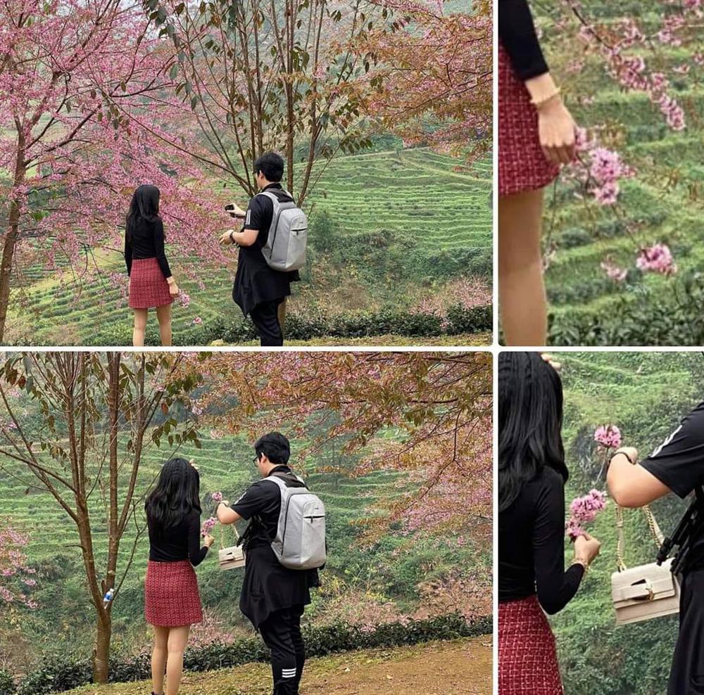 Bức xúc gái xinh rung cây để bạn tạo dáng hoa anh đào đang rơi, còn đăng clip lên mạng cười toe toét-5