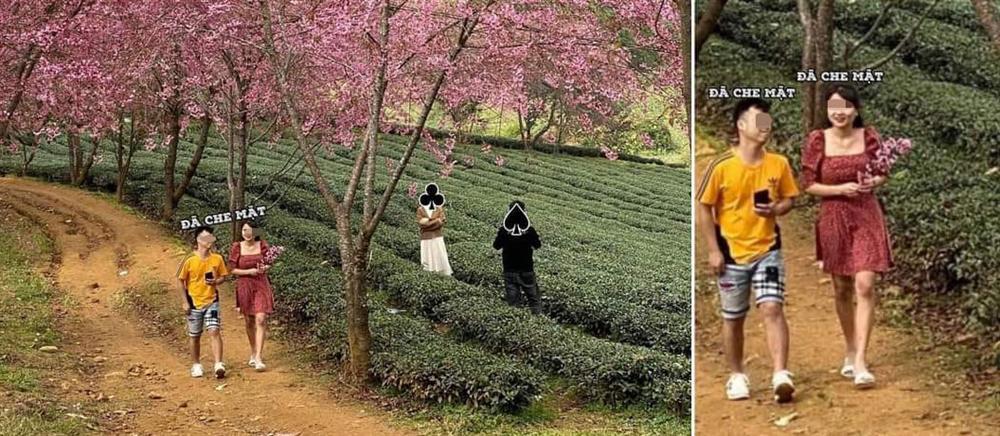 Bức xúc gái xinh rung cây để bạn tạo dáng hoa anh đào đang rơi, còn đăng clip lên mạng cười toe toét-6