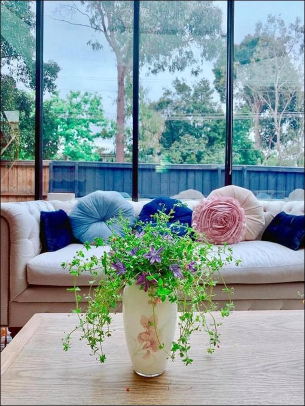 Ngôi nhà bình yên ngập tràn nắng gió, hương thơm và phòng khách full kính trong suốt vạn người mơ-11