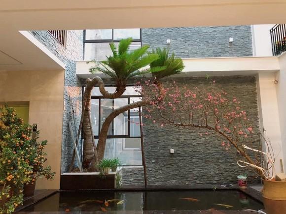 Khu vườn nhỏ xanh mướt, sai trĩu quả trên sân thượng của Ông hoàng nhạc đỏ Trọng Tấn-2
