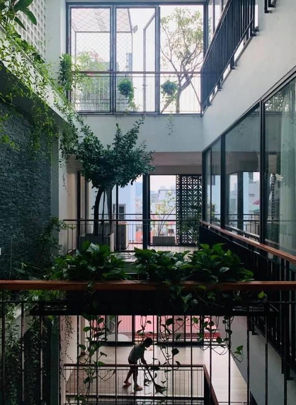Khu vườn nhỏ xanh mướt, sai trĩu quả trên sân thượng của Ông hoàng nhạc đỏ Trọng Tấn-4
