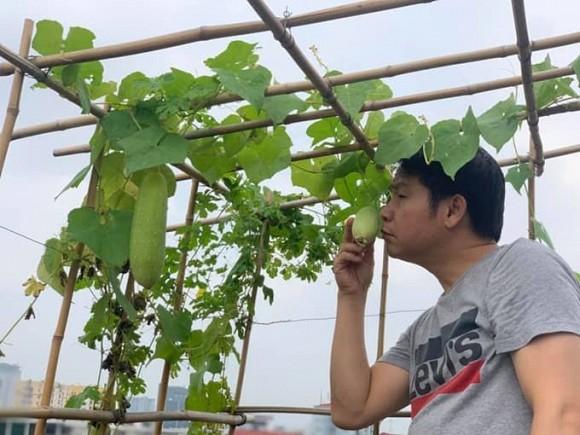 Khu vườn nhỏ xanh mướt, sai trĩu quả trên sân thượng của Ông hoàng nhạc đỏ Trọng Tấn-9