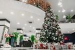 Trường con nhà giàu ĐH Thăng Long lại trang trí Giáng sinh đẹp mê hồn, đố trường nào làm lại