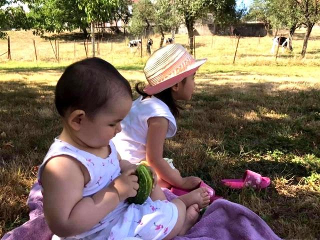 Trang trại trăm loại cây trái trĩu trịt quả của cặp vợ chồng Pháp - Việt-14