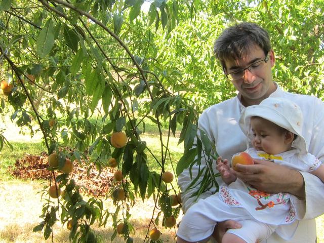 Trang trại trăm loại cây trái trĩu trịt quả của cặp vợ chồng Pháp - Việt-15